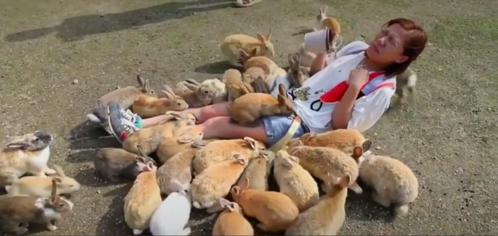 """The Words """"Fearless"""" and """"Rabbit"""" Don't Usually Go Together, but Here They Do [Video]"""