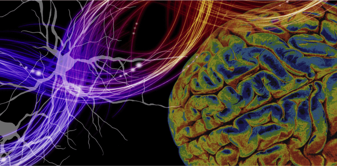 New research is connecting genetic variations to schizophrenia and other mental illnesses