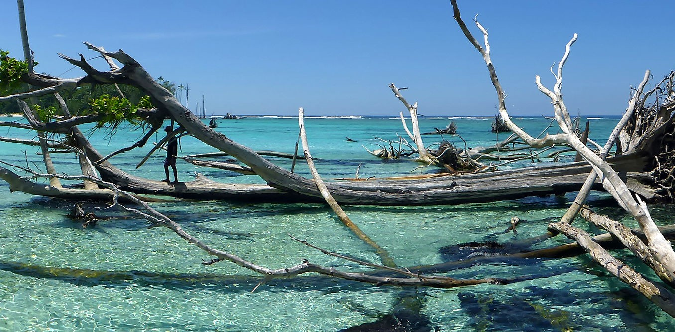 Sea-level rise has claimed five whole islands in the Pacific: first scientific evidence