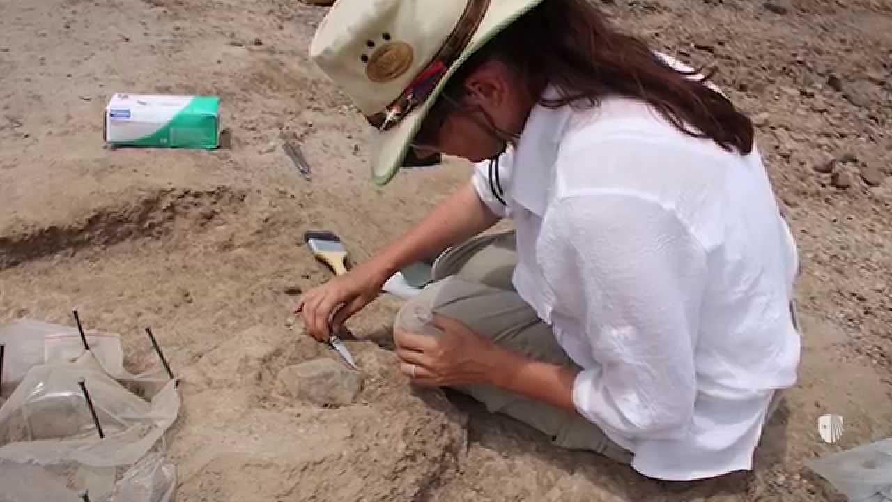 Our Stone Tool Discovery Pushes Back the Archaeological Record by 700,000 Years