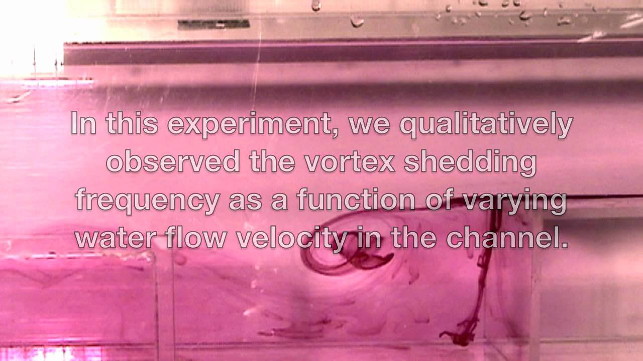 What fish mouths teach us about engineering clog-free filters [Video]